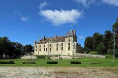 Château - Nederlands: Vendeuvre-sur-Barse (departement Aube, Frankrijk): het kasteel