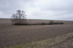 """Plate-forme d'artillerie - English:  Emplacement """"Langer Max"""", view from south to the site; Semide, Ardennes, France."""