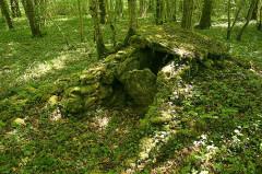 Parcelle D 201 avec ses vestiges préhistoriques - Français:   Sépulture néolithique