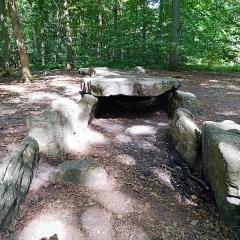 Dolmen dit Pierre Turquaise - English: Dolmen of Pierre Turquaise, forêt de Carnelle, Saint-Martin-du-Tertre.