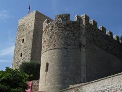 Tour du Suquet, chapelle Sainte-Anne et église Notre-Dame-de-l'Espérance - Français:   Château et tour de la Castre. Le Suquet, Cannes, FRANCE