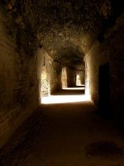 Amphithéatre ou Arènes - Arènes d'Arles (13).