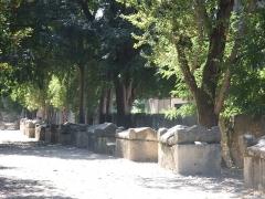 Nécropole des Alyscamps - Les Alyscamps à Arles, Bouches-du-Rhône, allée