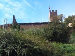 Château de l'Empéri - Français:   Photo prise en 2012