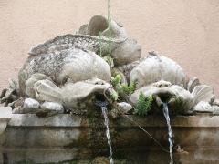 Fontaine du lavoir - English: Fontaine du Lavoir -detail- Cotignac