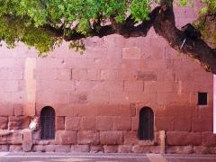 Cathédrale Saint-Léonce, baptistère et cloître - Français:   mur antique, de la cathédrale rouge-vert