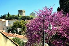 Chapelle de style roman (vieille) -  La Garde, Var (Provence) - Vue du château et de l'ancienne église Notre-Dame