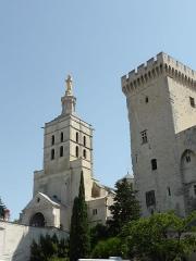 Cathédrale Notre-Dame-des-Doms - Cathédrale Notre Dame des Doms d'Avignon