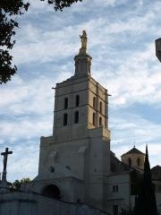 Cathédrale Notre-Dame-des-Doms - Cathédrale Notre-Dame des Doms d'Avignon (Vaucluse, France)