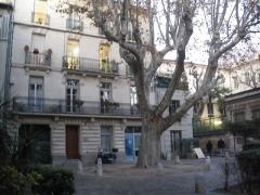 Hôtel du Laurens - Français:   Place du Plan de Lunel à Avignon