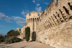 Remparts et leurs abords - English: Ramparts of Avignon