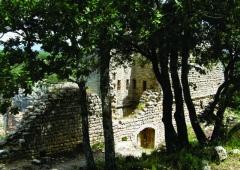 Fort (vestiges du) - Nederlands: De hoogte - een uitloper van het massief van de Luberon - waarop de ruïnes van Fort Buoux (Buoux, Vaucluse, Provence-Alpes-Côte d'Azur) zich bevinden, kende bewoning vanaf het midden-paleolithicum, over de Keltische en Gallo-Romeinse periode tot in de middeleeuwen. Het fort - de burcht - werd in 1660 geslecht op bevel van Lodewijk de XIVe.
