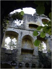 Ruines et sol de l'ancien couvent d'Abrillac - Français:   Ruines et sol de l\'ancien Couvent d\'Abrillac (Classement), Beynac-et-Cazenac.