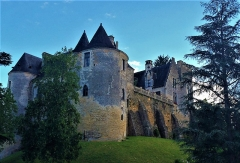Château de Fayrac - This building is indexed in the Base Mérimée, a database of architectural heritage maintained by the French Ministry of Culture,under the reference PA00082447 .