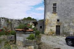 Château de Mareuil - Français:   Château de Mareuil, la cour intérieure avec puits.
