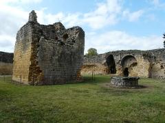 Ruines du château-fort - Français:   Les vestiges du donjon du château fort de Molières, Dordogne, France.