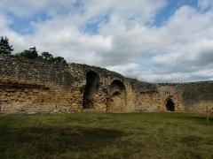 Ruines du château-fort - Français:   Les vestiges de l\'enceinte du château fort de Molières, Dordogne, France.