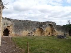 Ruines du château-fort - Français:   Les vestiges de l\'enceinte nord du château fort de Molières, Dordogne, France.