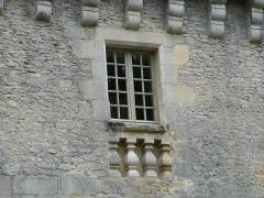 Château de Coulonges - Français:   Fenêtre du château de Coulonges, Montignac, Dordogne, France.