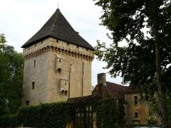 Manoir de la Salle et prieuré attenant - Français:   Le donjon du manoir de la Salle, Saint-Léon-sur-Vézère, Dordogne, France.