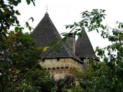 Manoir de la Salle et prieuré attenant - Français:   Les toits en lauzes du manoir de la Salle, Saint-Léon-sur-Vézère, Dordogne, France.