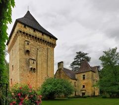 Manoir de la Salle et prieuré attenant - Français:   Manoir de la Salle et prieuré attenant