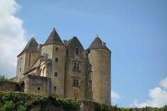 Château de Salignac - Français:   Château de Salignac