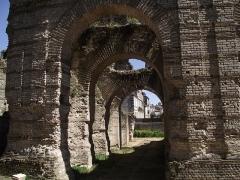 Restes de l'amphithéatre dit Palais Gallien - Français:   Arches du palais Gallien.