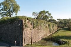 Fortifications -  Deforestation for a next restoration.