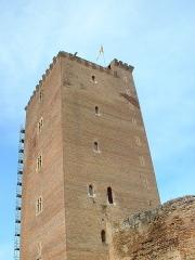 Château - Español: Torre del castillo de Montaner (Bearne, Francia)