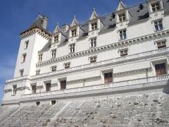 Domaine national du château de Pau ou château Henri IV -  Château de Pau (64)