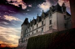 Domaine national du château de Pau ou château Henri IV - Español: Castillo de Pau