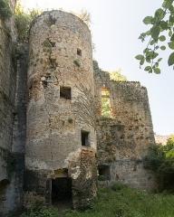 Château -  Castle of Saint Pée sur Nivelle