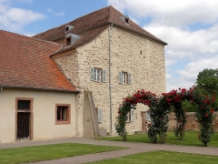 Abbaye -  Alsace, Bas-Rhin, Altorf, Ancien logis abbatial (XVIIIe), 6 place Saint-Cyriaque (PA00084581, IA67011109). Arrière du logis donnant sur les jardins.