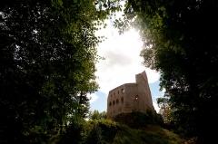 Ruines du château de Spesbourg - Français:   Château du Spesbourg ruines (Classé)