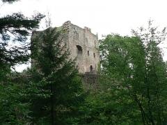 Ruines du château de Birkenfels - Français:   Château du Birkenfels ruines