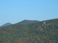 Ruines des châteaux de Ortenbourg et de Ramstein - Château du Ramstein (390 m) et l'Ungersberg (901 m) à Scherwiller (Bas-Rhin, France).