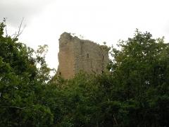 Ruines des châteaux de Ortenbourg et de Ramstein - Château du Ramstein (390 m) à Scherwiller (Bas-Rhin, France).