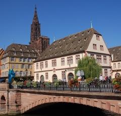 Anciennes Grandes Boucheries - Deutsch: Historisches Museum in Straßburg, im Hintergrund das Münster