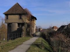 Vestiges des anciennes fortifications - Remparts de Bergheim (Haut-Rhin, France).