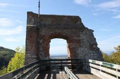 Ruines du château - Ruines du château de Ferrette