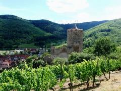 Château dit Schlossberg et enceinte - Français:   Château de Kaysersberg, Haut-Rhin, France