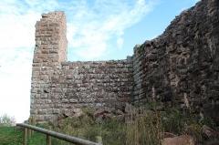 Ruines du château de Hohenack (petit Honack) - Français:   Château de Hohnack de Labarocheen France.