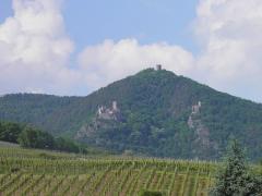 Châteaux de Guirsberg, de Haut-Ribeaupierre et de Saint-Ulrich - Français:   Châteaux du Saint-Ulrich (528 m), du Girsberg (528 m) et Haut-Ribeaupierre (642 m) à Ribeauvillé depuis Hunawihr (Haut-Rhin, France).