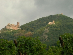 Châteaux de Guirsberg, de Haut-Ribeaupierre et de Saint-Ulrich - Français:   Vue depuis Ribeauvillé des châteaux du Saint-Ulrich (528 m), du Girsberg (528 m) et du Haut-Ribeaupierre (642 m) à Ribeauvillé (Haut-Rhin, France).