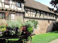 Anciennes fortifications - English: Walls of the city of Riquewihr, reused for walls of houses (Haut-Rhin, France).
