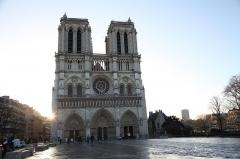 Cathédrale Notre-Dame - Cathédrale Notre-Dame de Paris