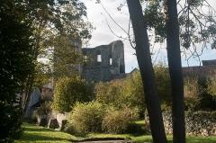 Château (vestiges) - English:  Tower de Ganne, seen from the Old bridge.