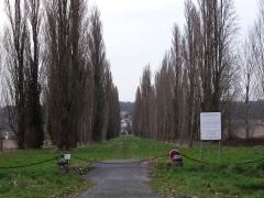 Château de Guermantes - Français:   Allée d\'accès au château de Guermantes, (commune de Gouvernes, Seine-et-Marne, région Île-de-France).