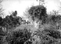 Château de Montaiguillon (ruines) -